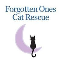 Forgotten Ones Cat Rescue & Adoption