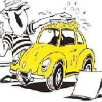 Gaines Car Deatailing