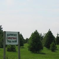 Harmony Christmas Tree Farm
