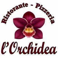 Ristorante-Pizzeria L'Orchidea