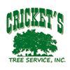 Cricket's Tree Service