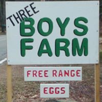 Three Boys Farm