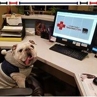 Oak Creek Veterinary Care
