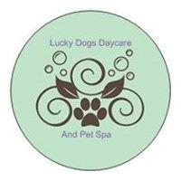 Lucky Dogs Daycare & Pet Spa