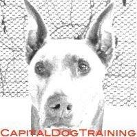 Capital Dog Training