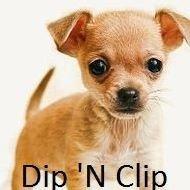 Dip 'N Clip