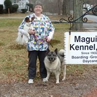 Maguire Kennels
