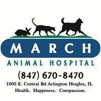 March Animal Hospital