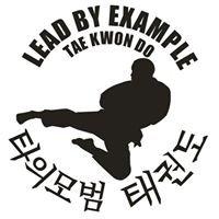 Lead By Example Tae Kwon Do - Fair Oaks