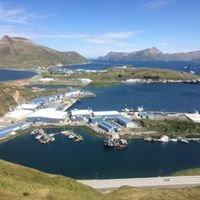 Dutch harbor/Unalaska