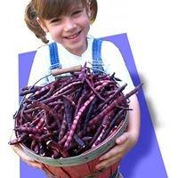 PurpleHull Pea Festival & World Championship Rotary Tiller Race