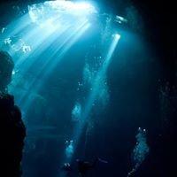 Diving Cenotes Tulum