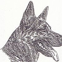 Quincy Police Working Dog Foundation