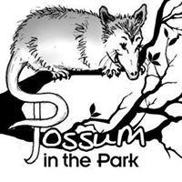 Possum In The Park
