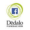 Fundación Dédalo