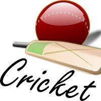 World Cricket News ا
