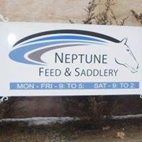 Neptune Feeds