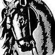 Merrymount Equestrian Center