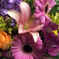 Jayne's Flowers and Gifts : Waverly, NY