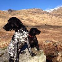 The Scottish Countryman