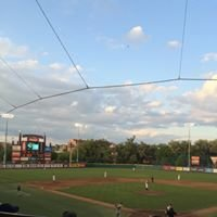 FSU Baseball at Dick Howser Stadium