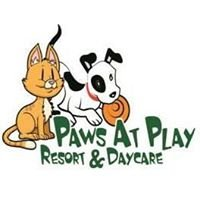 Paws at Play Resort and Daycare
