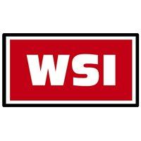 WSI Models