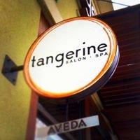 Tangerine AVEDA Lifestyle Salon & Day Spa - Hair Salon, Retail Store, Reno
