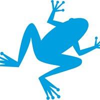 Blue Frog Plumbing