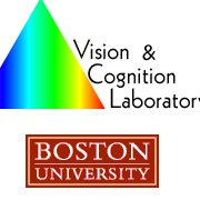 The Vision and Cognition Laboratory
