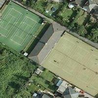 Albert Lawn Tennis Club