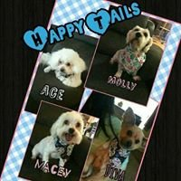 Happy Tails Pet Grooming