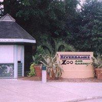 Lights Before Christmas - Riverbanks Zoo