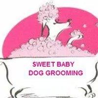 Sweet Baby Dog Grooming