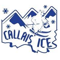 Callais Ice Service
