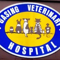 Gasing Veterinary Hospital