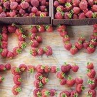 Dew Fresh Produce