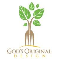 God's Original Design