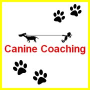 Canine Coaching