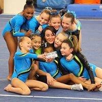 Raleigh School of Gymnastics