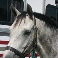 Premier's Riding School  LLC