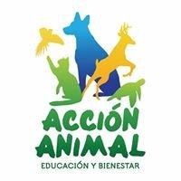 ACCION ANIMAL