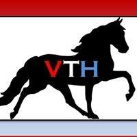 Victory Therapeutic Horsemanship