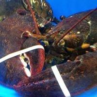 Taylor Lobster Company