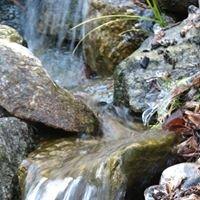 Liquid Landscape Designs
