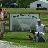 Green Roof Kennels