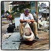 Reel Work Sport Fishing