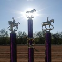 Allegan County Exceptional Equestrians (ACEE)