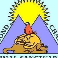 Second Chance Animal Sanctuaries
