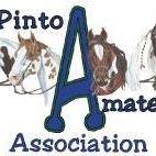 Pinto Horse Association Amateurs